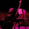 Das Cello beim Geburtstags-Poetry-Slam Erlangen im Januar 2014